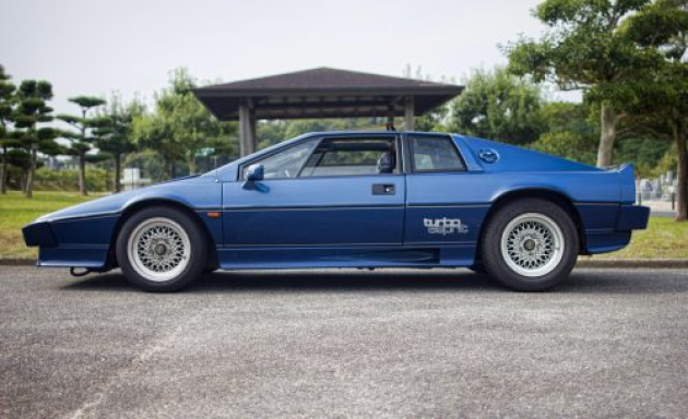 The Lotus Esprit.........Get one while you can still afford one